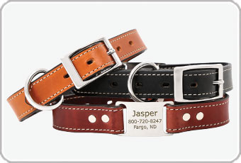 Shop Leather Scrufftags from dogIDs.